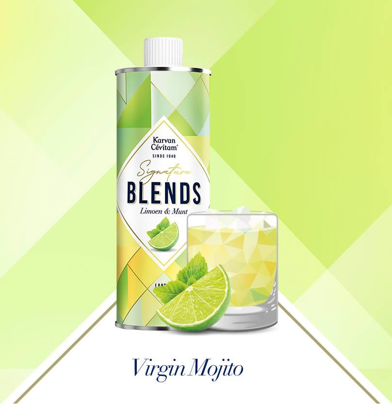 Virgin Moijito Mocktail