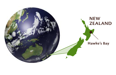About NewZealand Image