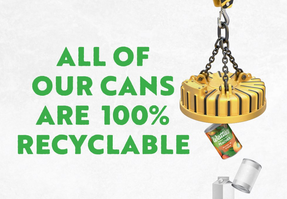 Can Recycling Process