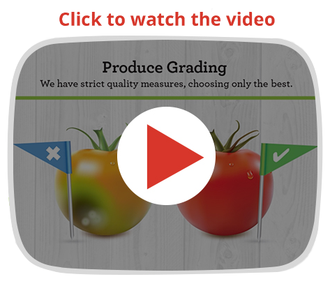 Canning process video
