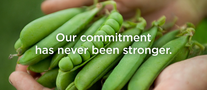 Our Commitment Has Never Been Stronger