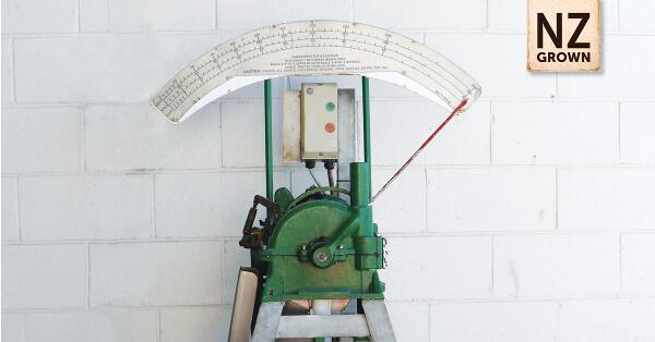 Pea Tenderometer