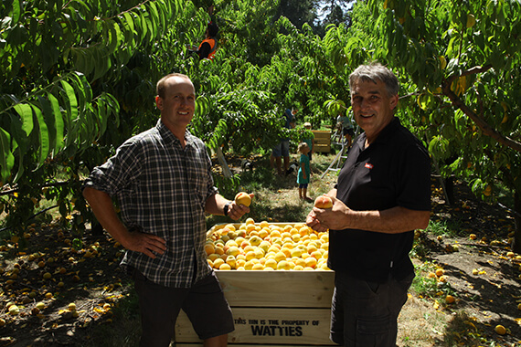 Third Generation Peach Growers
