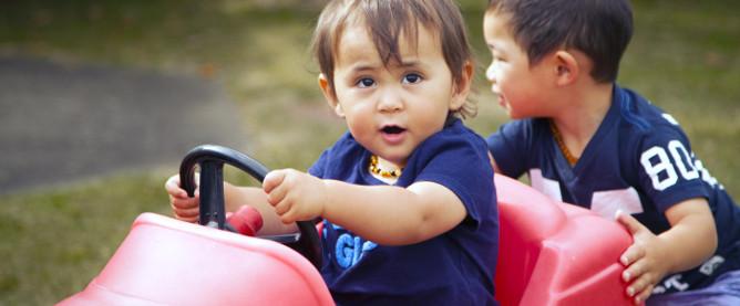 Developmental Milestones: from 12 months onwards