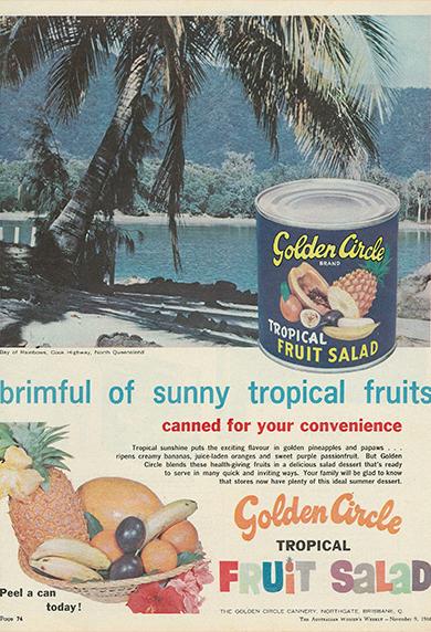 Brimful Sunny Fruits 66